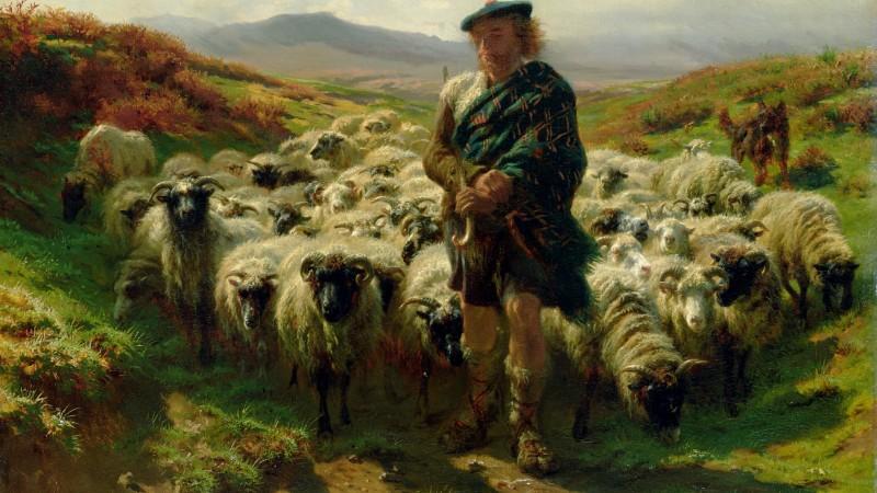 Look at the Lamb (Day10)