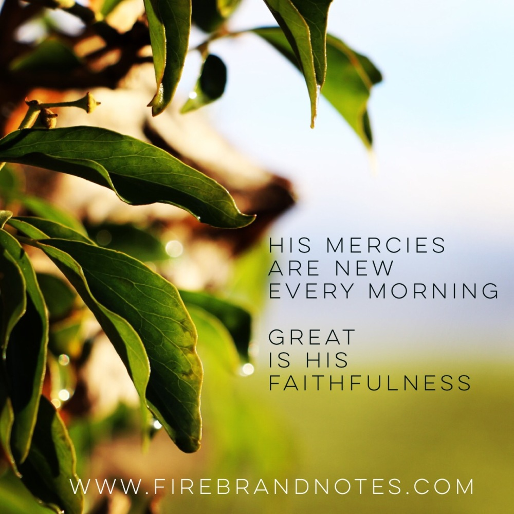 mercies3